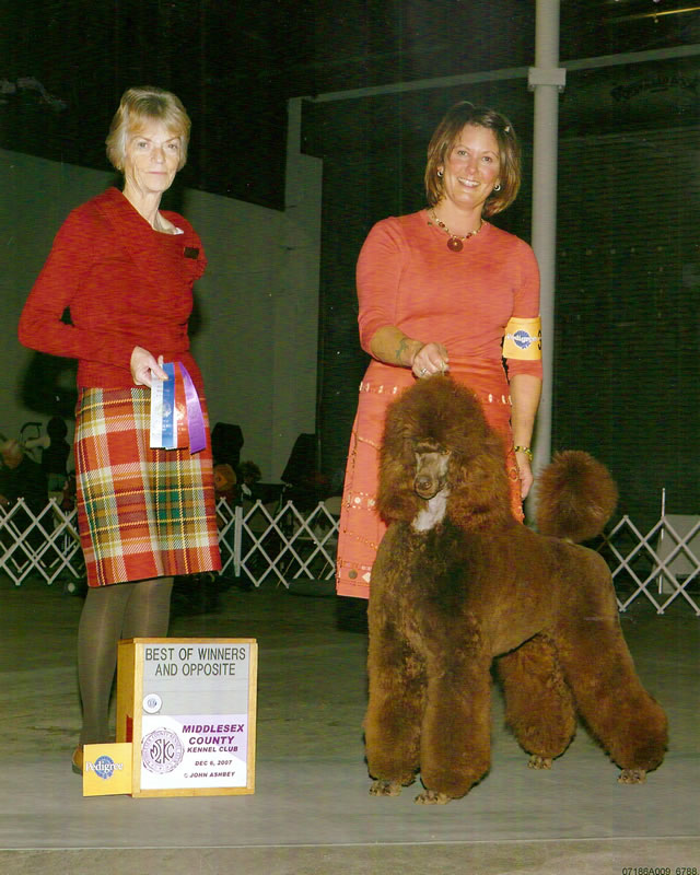 Christine Nethery with a Champion Littleann's Girl Brown - 2010